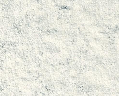 Arabescato Perla Fossil